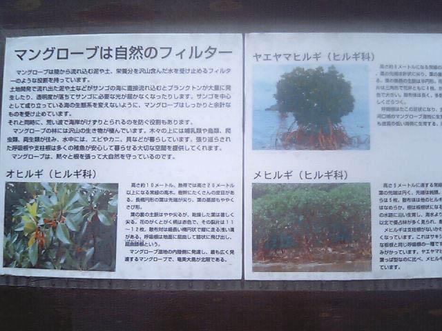 kawamitsu2.jpg