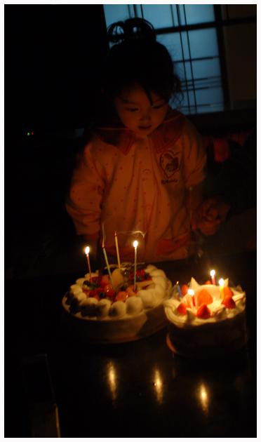 2009_1_5.jpg