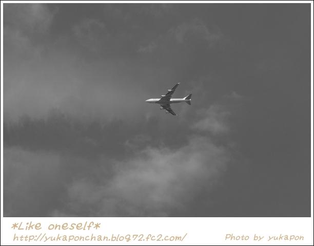 飛行機MC