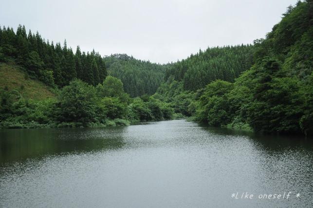 DSC_0565-1.jpg