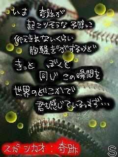 img_381527_17770917_10.jpg