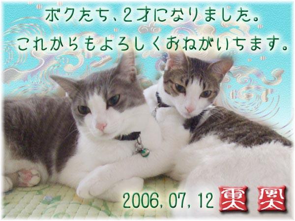2006,07,12.jpg
