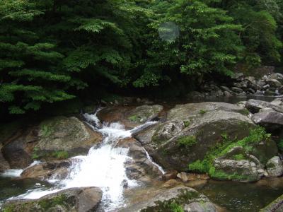 屋久島のきれいな川の水!