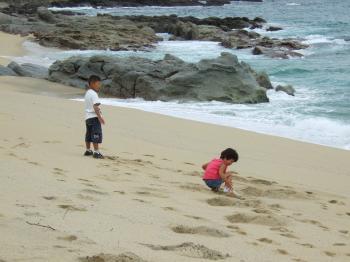 いなか浜 海がめの産卵する浜