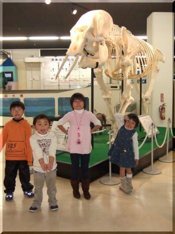 京都市立科学センター行ってきました♪