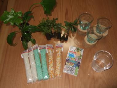 観葉植物の材料