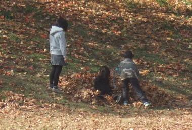 大住ヶ丘公園で落ち葉と遊ぶ