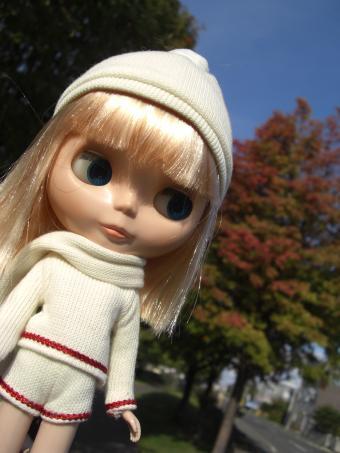 秋のグッドネイバー1