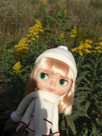 秋のグッドネイバー2