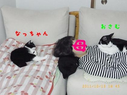 RIMG2169.jpg