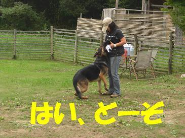 CIMG0883_sh01.jpg