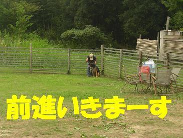 CIMG0961_sh01_20080906162635.jpg