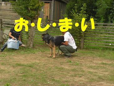 CIMG0974_sh01.jpg