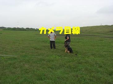 CIMG1046_sh01.jpg