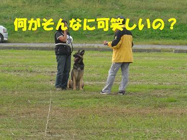 CIMG1193_sh01.jpg
