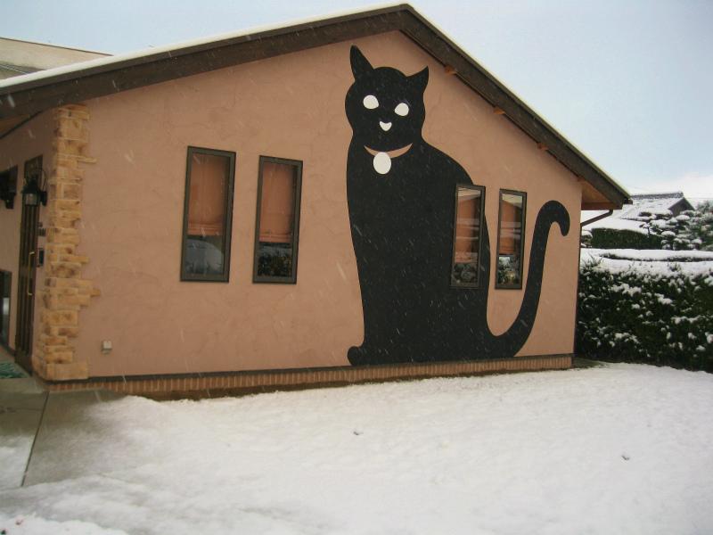 Café猫の散歩道の東壁面(12月26日)2