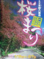 桜祭りポスター