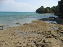 浜比嘉島5