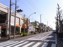 丸山台商店街