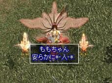 20071118235735.jpg