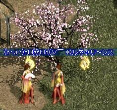 20081011025129.jpg