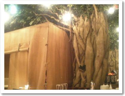 ガジュマルの木が・・