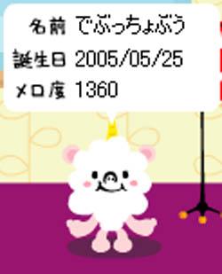 20051204113129.jpg