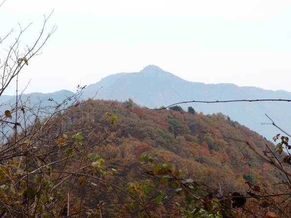 大岳山を望む