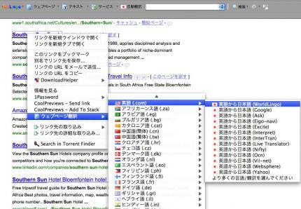 Firefox20090624-001.jpg