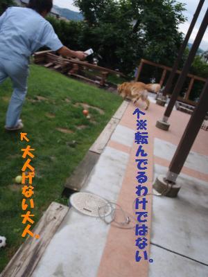 018_convert_20090703083741[1]