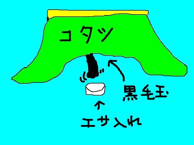 snap_chibitaseiko_200952232013.jpg