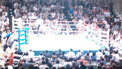 boxing1109302.jpg