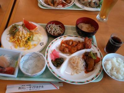 kenshukairyokou11100115.jpg