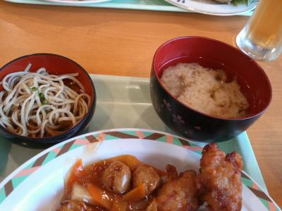 kenshukairyokou11100118.jpg