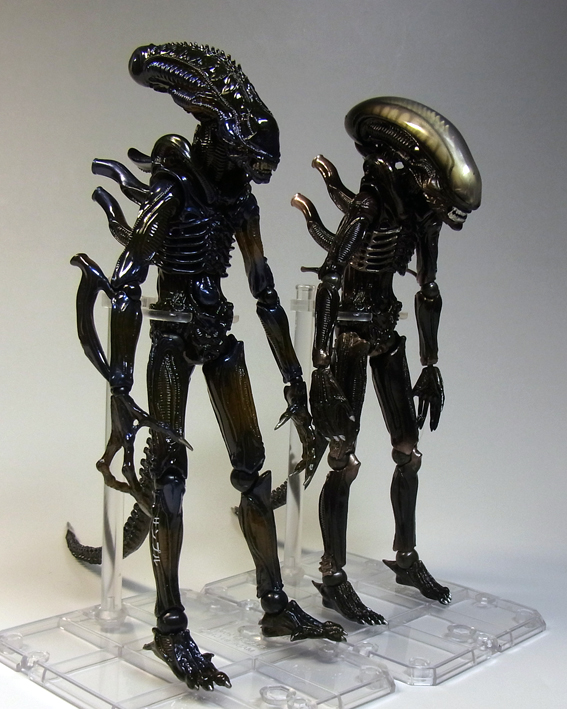 alienw20.jpg