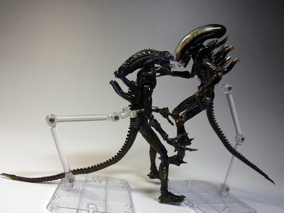 alienw34.jpg