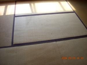 撤去する前の畳