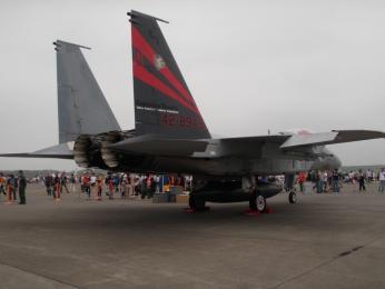 F-15J第2航空団第201飛行隊特別塗装2.JPG