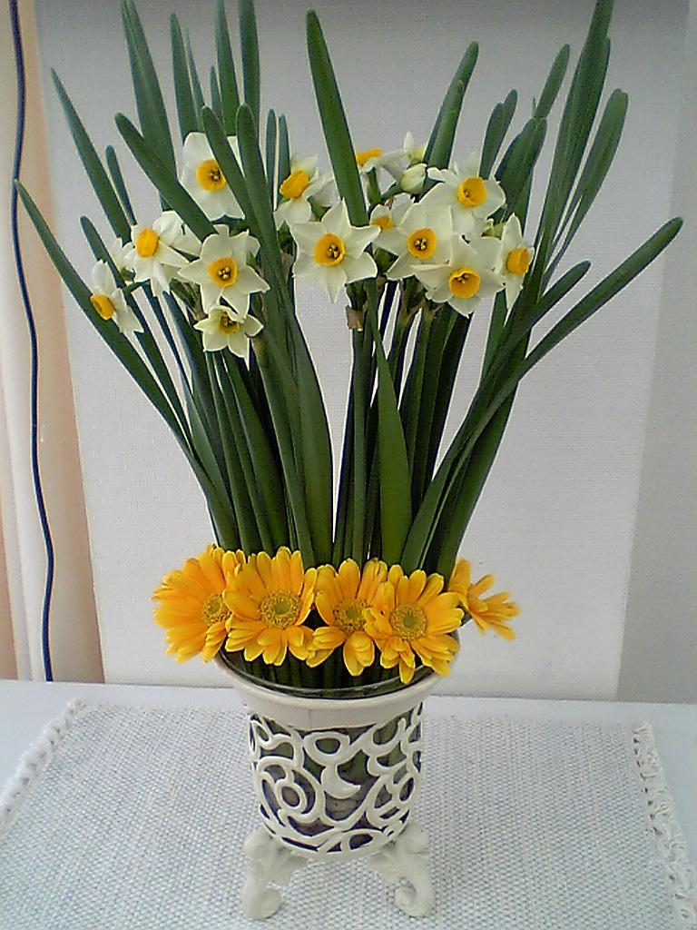 まごころさんのお花