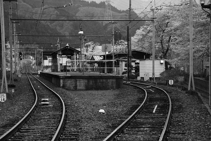 サクラ咲く駅