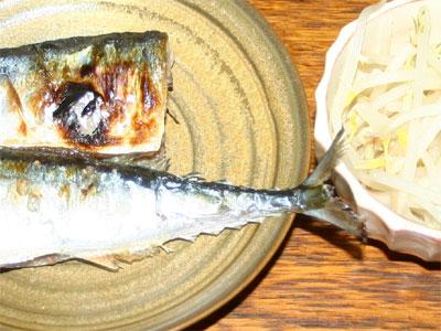 秋刀魚の塩焼きともやし