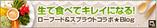 6386c71f-s_20100608214523.jpg