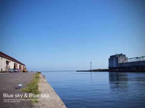 小樽港の青空と海