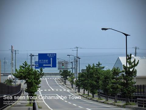 長万部の町から海を望む