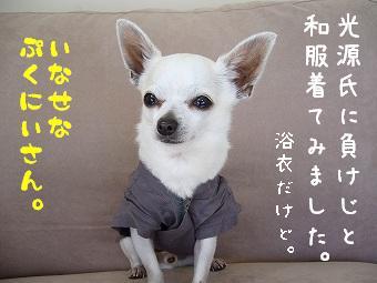 s-nihonmei.jpg