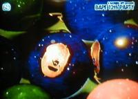 スペースシャワーTV (B)APE 画像