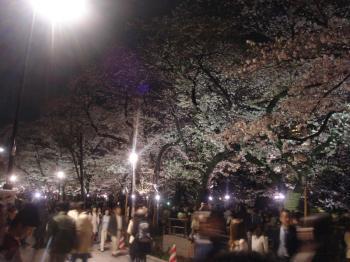 20090413_15.jpg