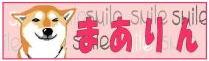 柴犬麻阿りんのページ